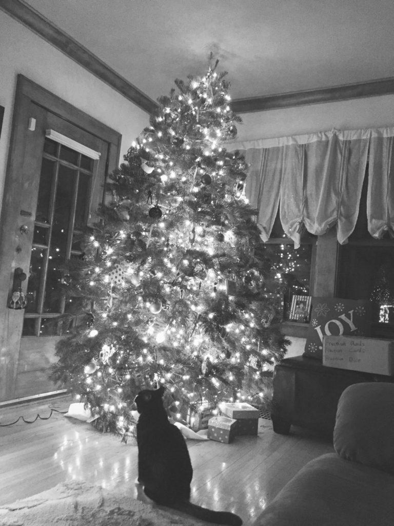 The Christmas Crash Doing Divorce blog